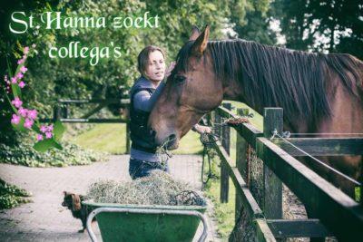 st-hanna-zoekt-collegas